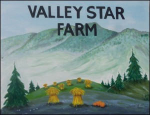 valley star farm sign